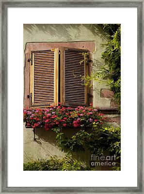 Riquewihr Window Framed Print by Brian Jannsen