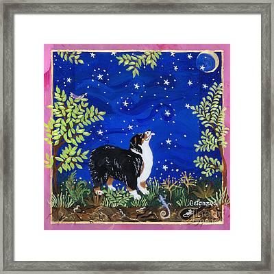 Risa Stargazer Framed Print by Sue Betanzos