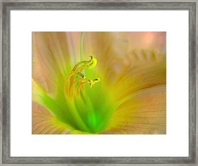 Rise And Shine Framed Print by Abbie Loyd Kern