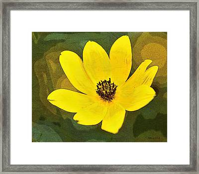 Rising Above Framed Print by Bellesouth Studio