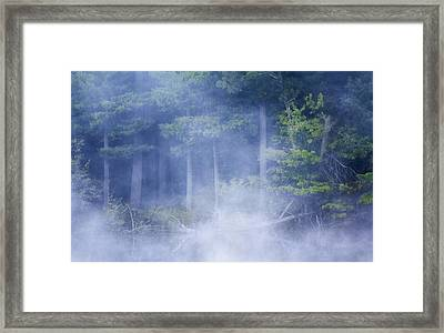 Rising Mist Framed Print by Barbara Smith