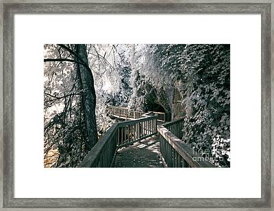 River Boardwalk Framed Print by Paul W Faust -  Impressions of Light