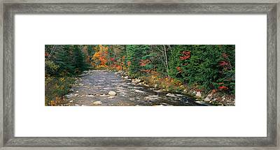 River Flowing Through A Forest, Ellis Framed Print by Panoramic Images