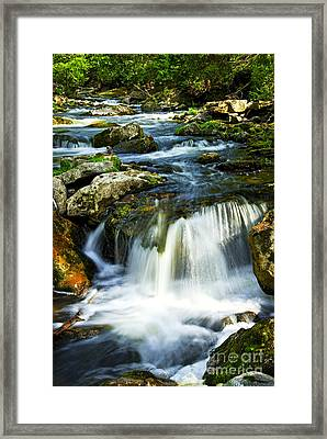 River Flowing Through Woods Framed Print by Elena Elisseeva