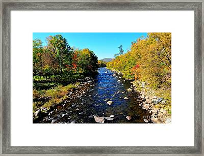 River Of Gold Framed Print by Catherine Reusch  Daley