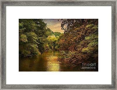 River Path Framed Print by Svetlana Sewell