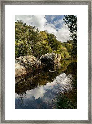 River Reflections II Framed Print by Marco Oliveira