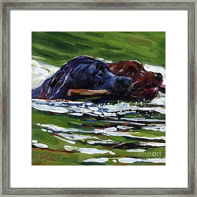 River Run Framed Print by Molly Poole