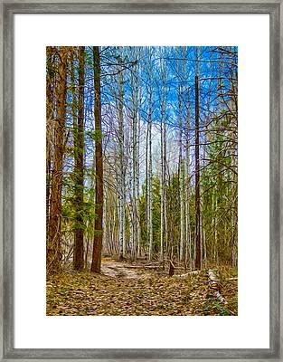 River Run Trail At Arrowleaf Framed Print by Omaste Witkowski