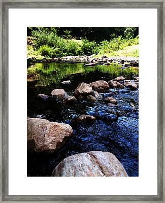 Riversong Framed Print by Lucy D