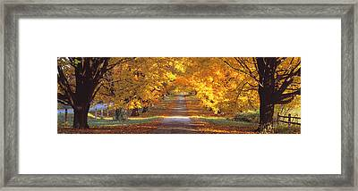 Road, Baltimore County, Maryland, Usa Framed Print by Panoramic Images