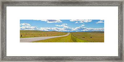 Road Passing Through A Field, Alberta Framed Print by Panoramic Images
