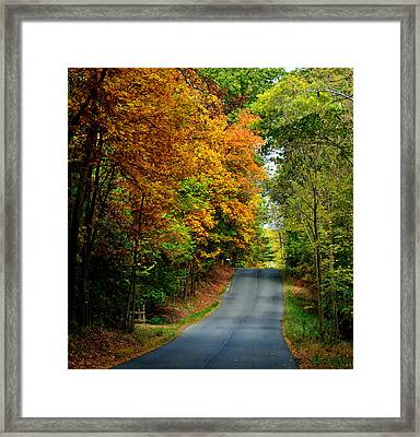 Road To Riches Framed Print by Carlee Ojeda