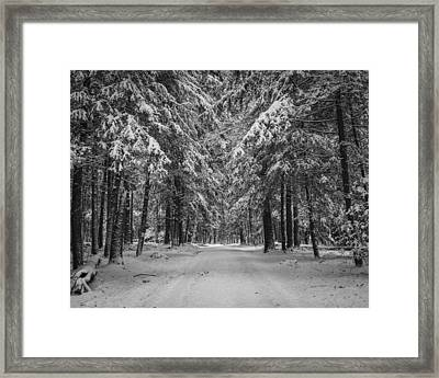 Road To Winter Framed Print by Brian Young