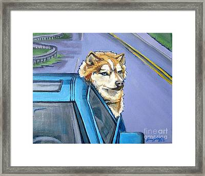 Road-trip - Dog Framed Print by Grace Liberator