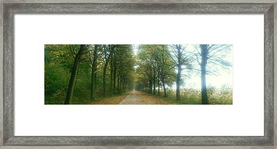 Road With Fog, France Framed Print by Panoramic Images