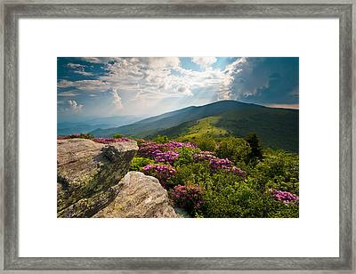 Roan Mountain From Appalachian Trail Near Jane's Bald Framed Print by Dave Allen