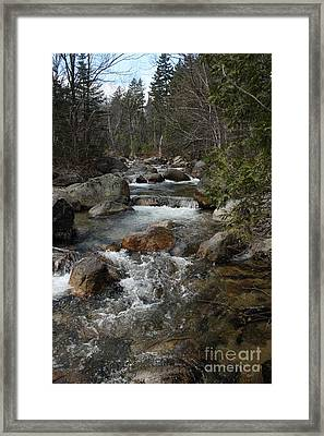Roaring Brook Framed Print by Joseph Marquis