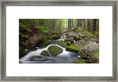Roaring Brook Framed Print by Patrick Downey