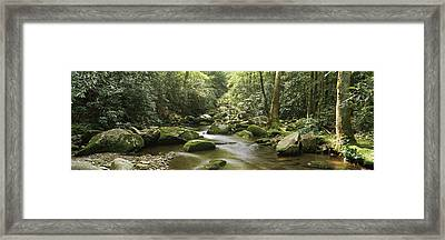 Roaring Fork River Flowing Framed Print by Panoramic Images
