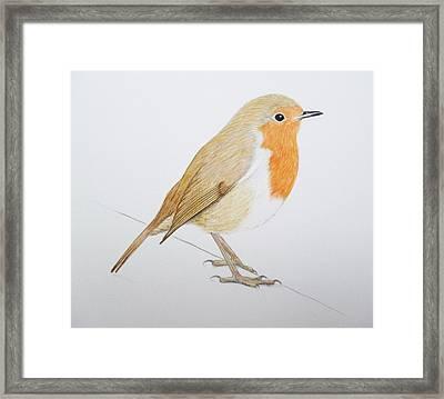 Robin Framed Print by Ele Grafton