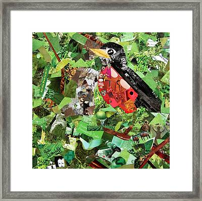 Robin Framed Print by Paula Dickerhoff