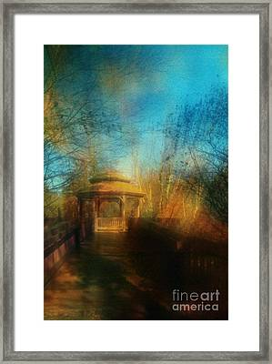 Robindro Framed Print by Floyd Menezes