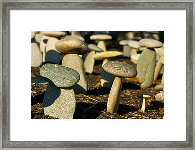 Rock Mushrooms Framed Print by Wayne Kondoff