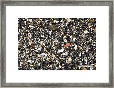 Rocks On The Beach Framed Print by Steven Ralser