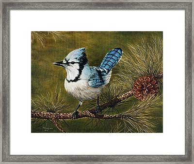 Rocky Mountain Morning Framed Print by Rick Bainbridge