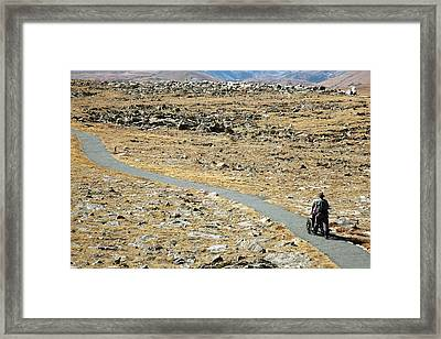 Rocky Mountain National Park Trail Framed Print by Jim West