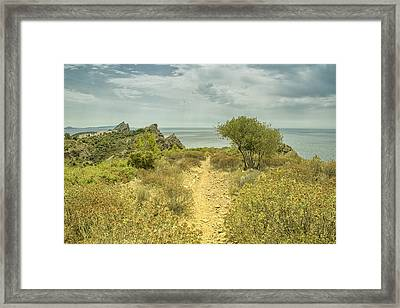 Rocky Path To The Sea Framed Print by Georgia Fowler