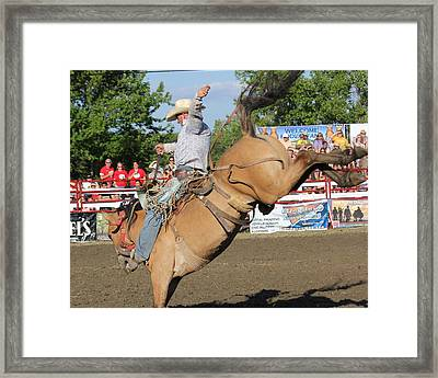 Rodeo Framed Print by Bruce  Morrell