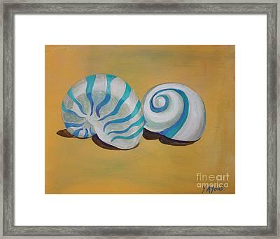 Rodios Shells Framed Print by Yvonne Ayoub