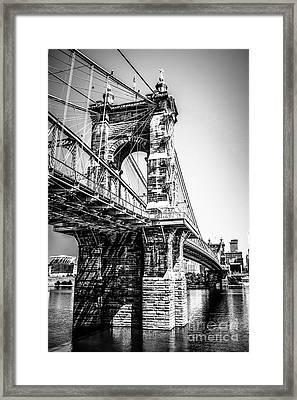 Roebling Bridge Cincinnati Black And White Picture Framed Print by Paul Velgos