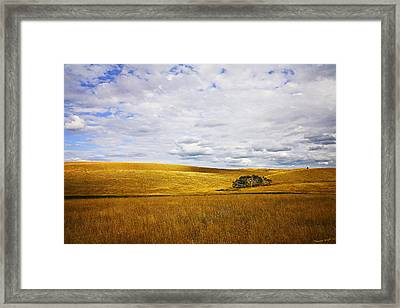 Rolling Prairie Framed Print by Theresa Tahara