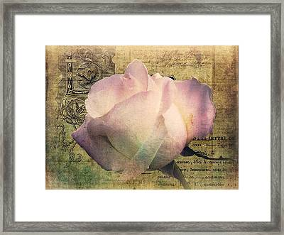 Romance Of The Rose Framed Print by Shirley Sirois
