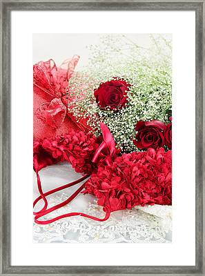 Romance Framed Print by Stephanie Frey