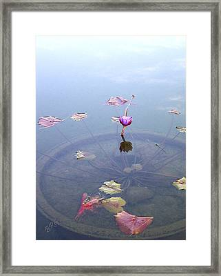 Romantic Pond Framed Print by Ben and Raisa Gertsberg