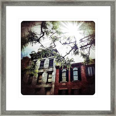 Romantic West Village Framed Print by Natasha Marco