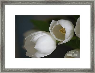 Romantic White Framed Print by Carol Lynch