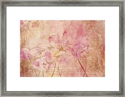 Romantiquite -  28at22 Framed Print by Variance Collections