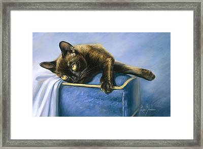 Romeo Framed Print by Lucie Bilodeau