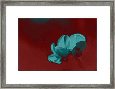 Rondo Floral - S33t2r Framed Print by Variance Collections