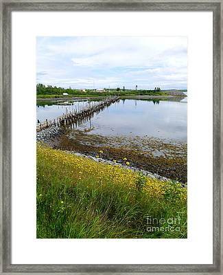 Roosevelt Campobello View Framed Print by Christiane Schulze Art And Photography