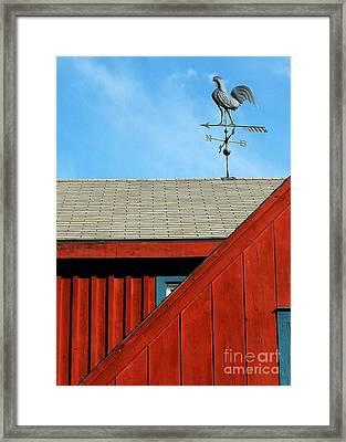 Rooster Weathervane Framed Print by Sabrina L Ryan