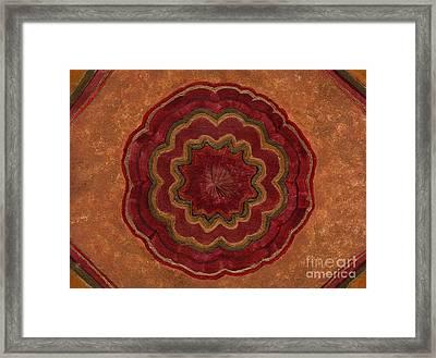 Root Flower Framed Print by Julia Stubbe