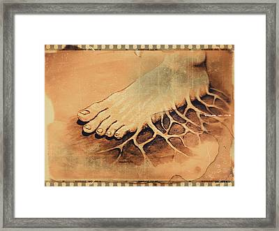 Roots Framed Print by Paulo Zerbato