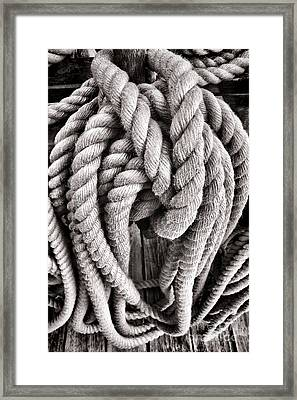 Rope Framed Print by Olivier Le Queinec