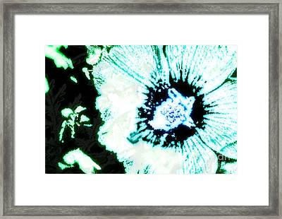 Rosa Sinensis Abstract Framed Print by Floyd Menezes